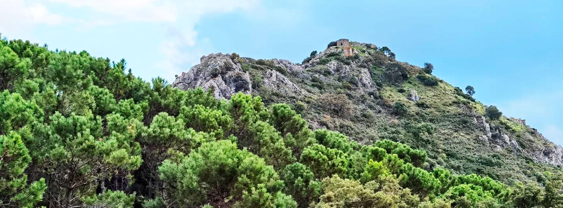 Constituida una plataforma contra las torres de alta tensión en el paraje Montemayor (Benahavís)